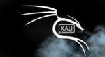 Headless Kali Linux Setup on Raspberry Pi 4