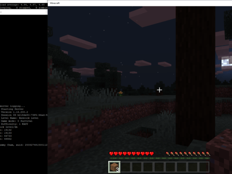 Minecraft Bedrock running on Raspberry Pi